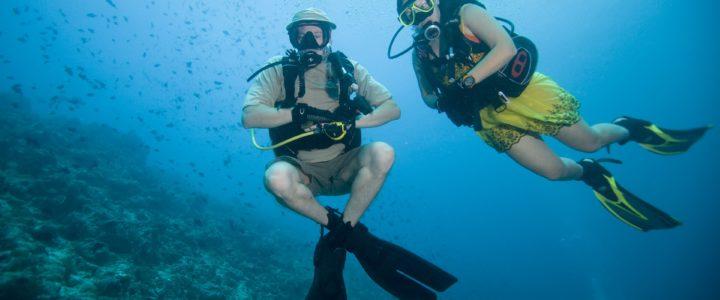 Under the Sea – Kooperationsprojekt mit der Schule am See wird gefördert